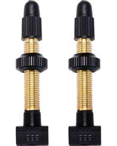 BBB BTI-159 tubeless valve-Brass-48mm